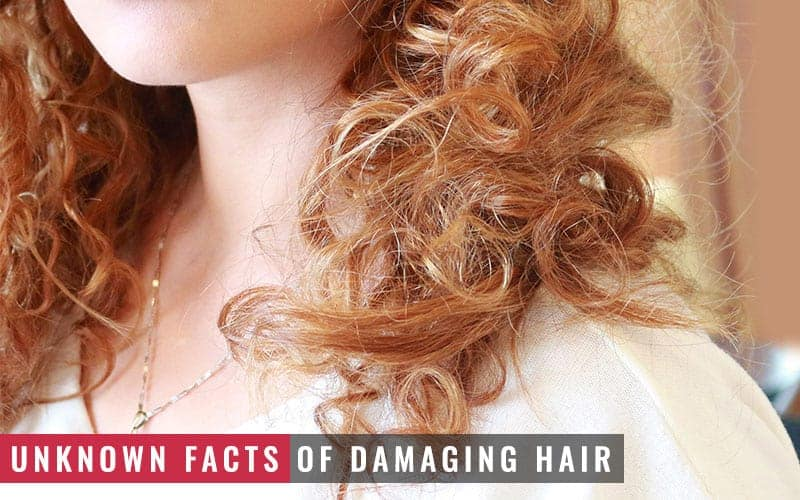 Featured Image of Unknown Facts of Damaging Hair
