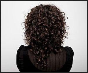 Curly Hair - V1 May