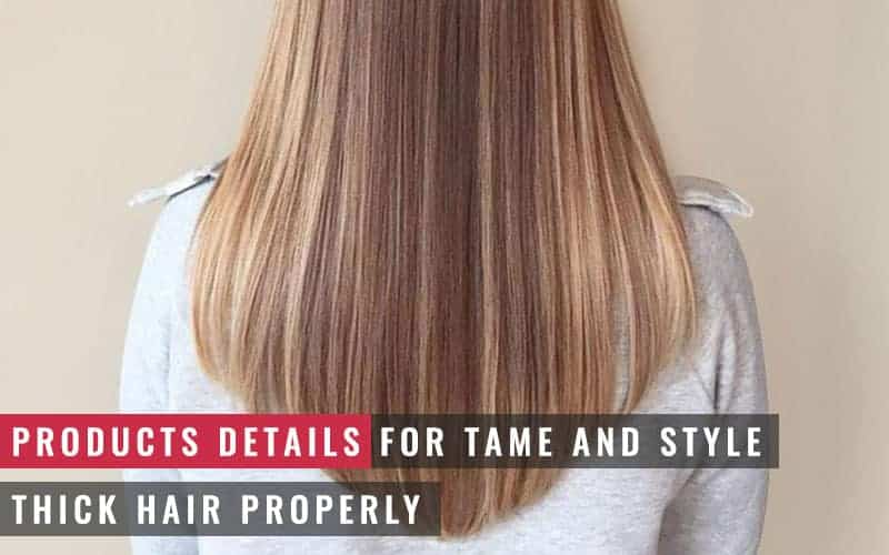 Featured Image of Products Details for Tame and Style Thick Hair Properly