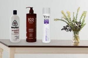 The Inside Scoop on Anti-dandruff Shampoos
